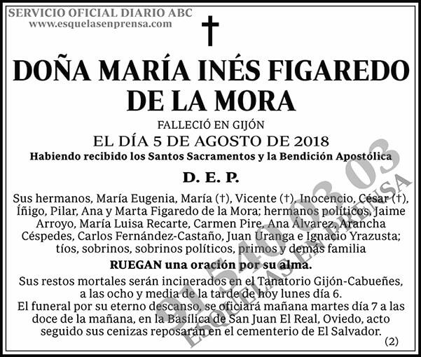 María Inés Figaredo de la Mora
